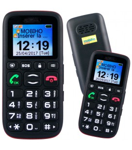 Telephone portable senior double sim